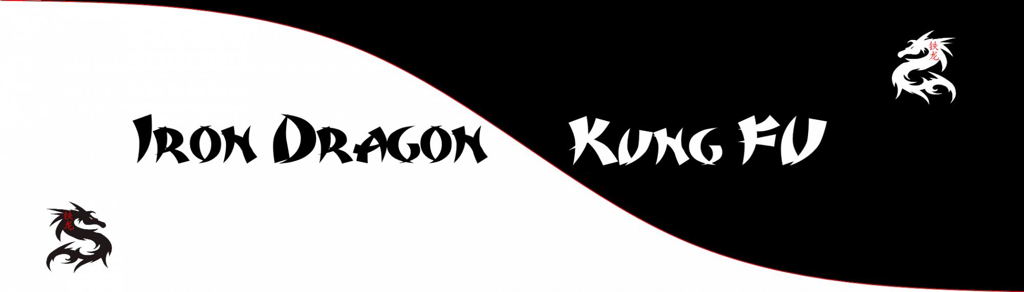 Iron Dragon Kung Fu
